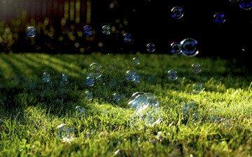 трава, природа, растение, лужайка, мыльные пузыри, мыльные пузырики