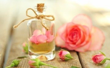 flowers, buds, roses, petals, oil, perfume, bottle