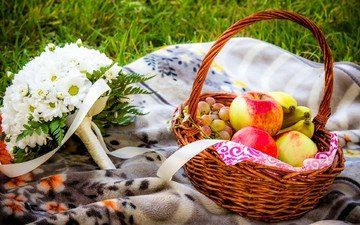 цветы, трава, виноград, фрукты, яблоки, букет, хризантемы, корзинка, пикник, бананы