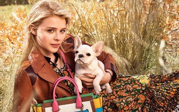 grass, girl, blonde, model, actress, dog, bag, chloe moretz