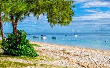 небо, облака, деревья, солнце, море, песок, пляж, горизонт, лодки, побережье