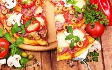 зелень, грибы, помидоры, оливки, пицца, начинка, кусок, итальянская кухня
