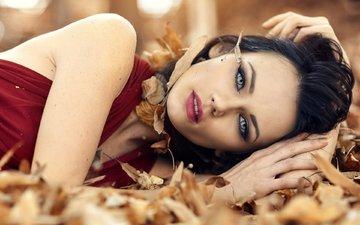 глаза, девушка, платье, брюнетка, модель, губы, лицо, длинные волосы, алессандро ди чикко
