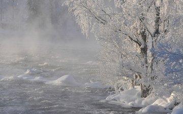 река, снег, природа, дерево, лес, зима, ветки, иней