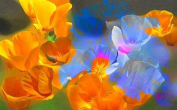 flowers, line, petals, paint, maki, rendering