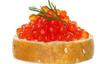 sandwich, bread, white background, dill, caviar, seafood, red caviar