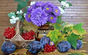 flowers, leaves, basket, berries, still life, plum, asters