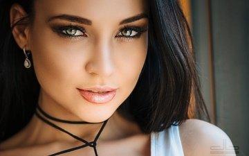 портрет, брюнетка, женщины, модель, лицо, ангелина петрова
