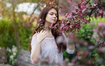 ветка, цветение, девушка, поза, весна, волосы, лицо, закрытые глаза, виктория соколова