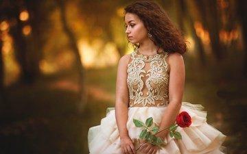 девушка, настроение, платье, цветок, роза, боке