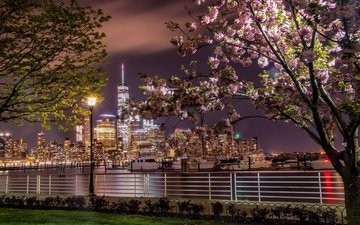 night, lights, the city, usa, new york, spring