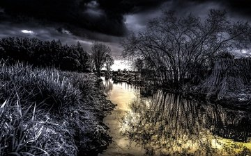 river, nature