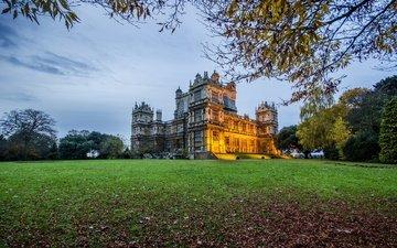трава, парк, замок, англия, ноттингем, вуллатон холл, вуллатон парк