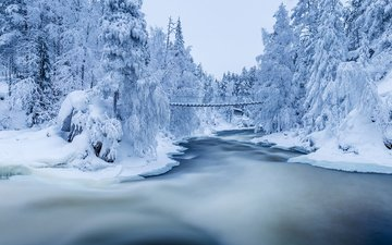 river, nature, forest, winter, bridge, jari ehrstrom