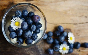 flowers, chamomile, berries, blueberries, glass