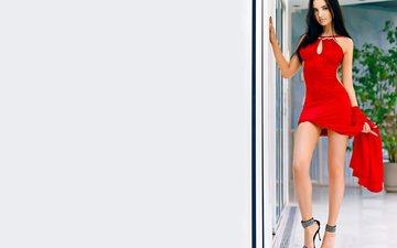 девушка, брюнетка, взгляд, модель, ножки, фигура, красное платье