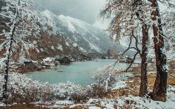 river, mountains, snow, nature, winter, russia, altay, vladimir lipetskih