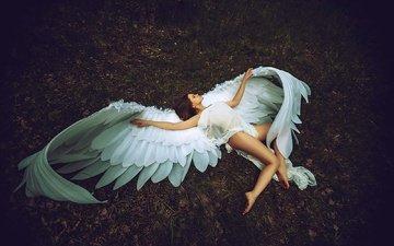 девушка, крылья, модель, ангел, ноги, креатив, позирует, леонид мочульский