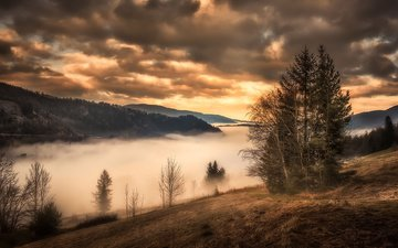 clouds, mountains, nature, tree, sunset, fog, autumn