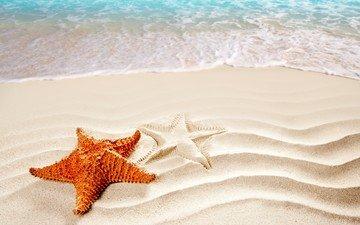 волны, море, песок, пляж, морская звезда