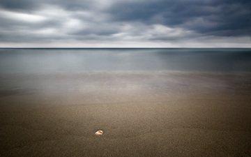 пейзаж, море, песок, пляж, ракушка