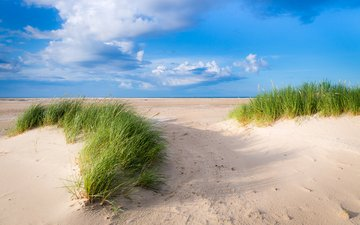 небо, трава, облака, пейзаж, песок, дюны