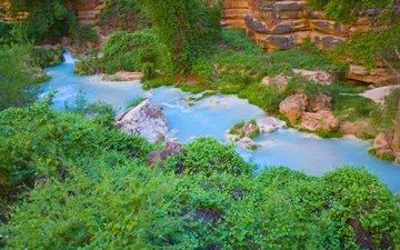 река, природа, ручей, кусты