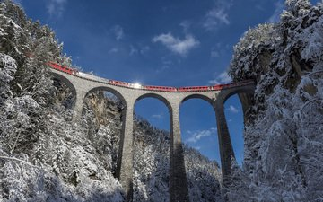 nature, forest, winter, landscape, bridge, train