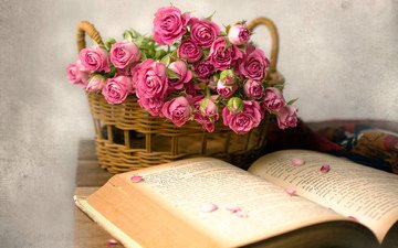 flowers, roses, basket, book