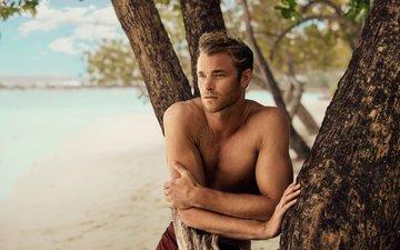actor, male, the maldives, david frampton, milzero