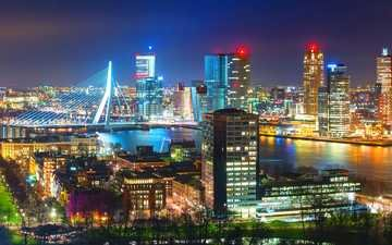 night, lights, the city, netherlands, rotterdam
