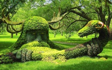 nature, tree, park, creative, plant, sculpture, lawn, botanical garden
