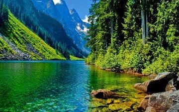 небо, деревья, река, горы, снег, камни, лес, склон