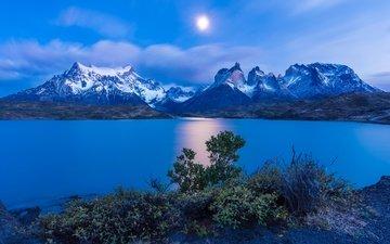 озеро, горы, кусты, снежные вершины, чили, торрес-дель-пайне, lake pehoe