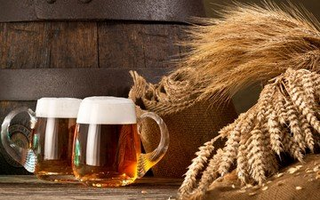 ears, wheat, mugs, beer, foam, grain, burlap, wooden surface