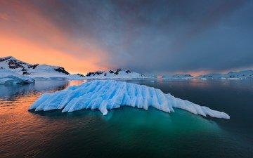 landscape, sea, ice, arctic, antarctic, antartida, raimondo restelli