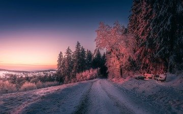 road, trees, the evening, nature, sunset, winter
