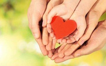 сердце, любовь, руки, семья