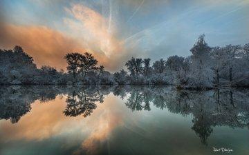озеро, природа, лес, отражение, кусты, иней