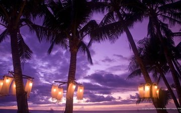 clouds, the evening, nature, coast, palm trees, lantern, tropics, philippines, boracay
