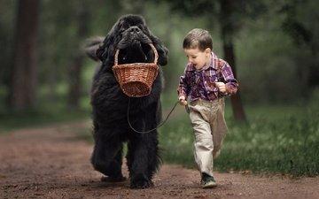 собака, мальчик, животное, друзья, ньюфаундленд