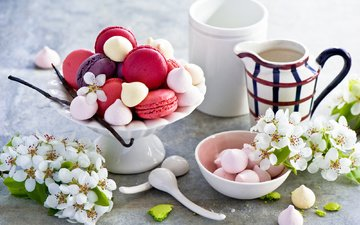 flowers, branches, cherry, cookies, cakes, marshmallows, spoon, macaroon, meringue