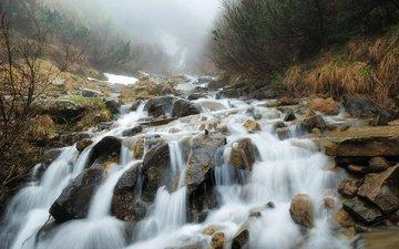 река, скалы, природа, камни, лес, ручей, водопад, карпаты