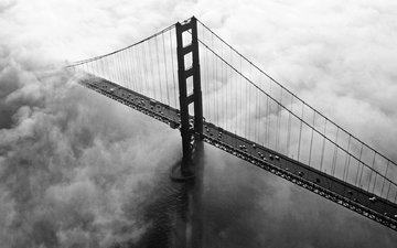 fog, bridge
