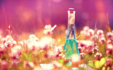 flowers, grass, bottle, elixir