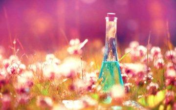 цветы, трава, флакон, эликсир