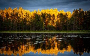 небо, деревья, озеро, природа, лес, отражение, осень