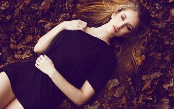 листья, девушка, портрет, взгляд, волосы, лицо, черное платье, шатенка, лежа