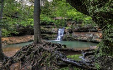 река, скалы, природа, дерево, лес, водопад, корни