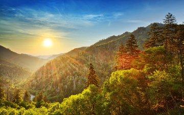 небо, облака, деревья, горы, солнце, природа, лес, закат, лучи, осень